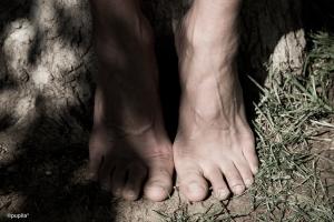 pies (1 de 1)