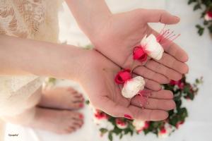 txell mostra flors mans